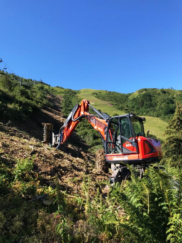 Service de travaux paysager et forestier